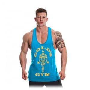 Gold's Gym Muscle Joe...